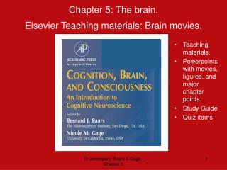Chapter 5: The brain.  Elsevier Teaching materials: Brain movies.
