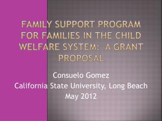 FAMILY SUPPORT PROGRAM FOR FAMILIES IN THE CHILD WELFARE SYSTEM:  A GRANT PROPOSAL