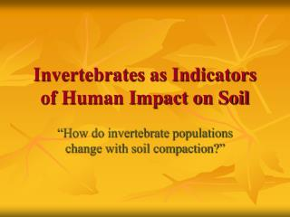 Invertebrates as Indicators of Human Impact on Soil