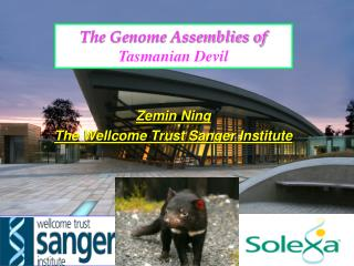 The Genome Assemblies of  Tasmanian Devil