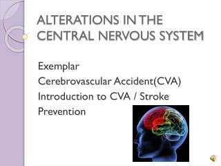ALTERATIONS IN THE CENTRAL NERVOUS SYSTEM