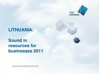 LITHUANIA: Sound in resources for businesses 2011