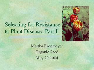 Selecting for Resistance  to Plant Disease: Part I