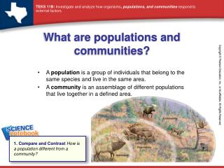 What are populations and communities?