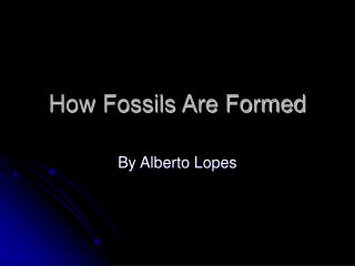 How Fossils Are Formed
