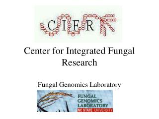 Center for Integrated Fungal Research