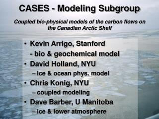 CASES - Modeling Subgroup