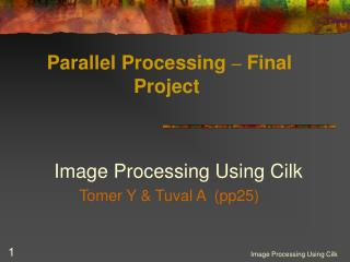 Parallel Processing  –  Final Project
