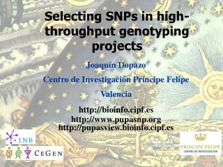 Selecting SNPs in high-throughput genotyping projects