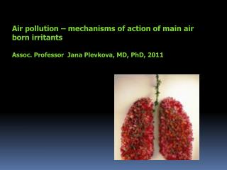 Air pollution – mechanisms of action of main air born irritants