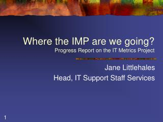 Where the IMP are we going? Progress Report on the IT Metrics Project