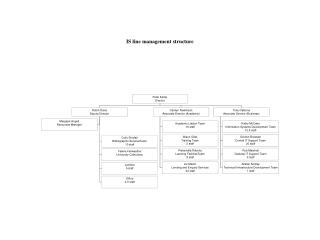 IS line management structure