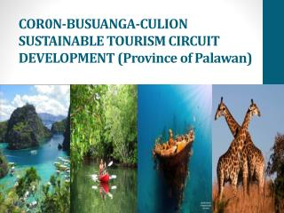 COR0N-BUSUANGA-CULION SUSTAINABLE TOURISM CIRCUIT DEVELOPMENT (Province of Palawan)