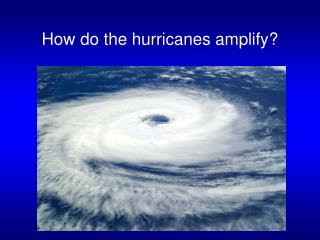 How do the hurricanes amplify?