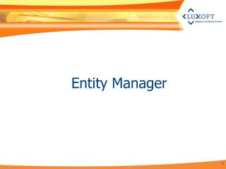 Entity Manager