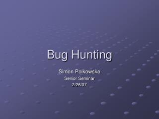 Bug Hunting
