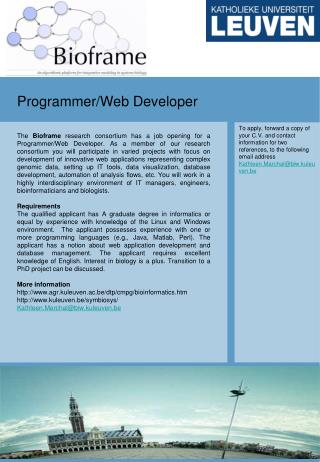 Programmer/Web Developer