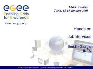 Hands on  Job Services Emidio Giorgio INFN