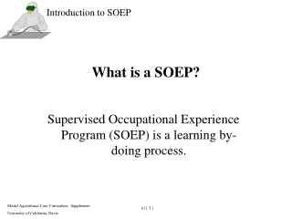 What is a SOEP