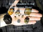 Ecohydraulics in the Mississippi River:  Freshwater Mussels Modeling