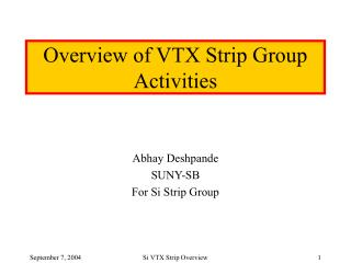 Overview of VTX Strip Group Activities