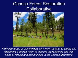Ochoco Forest Restoration Collaborative