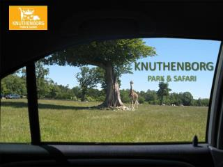 Knuthenborg PARK & SAFARI