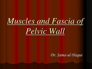 Muscles and Fascia of Pelvic Wall