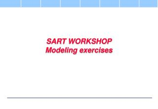 SART WORKSHOP Modeling exercises