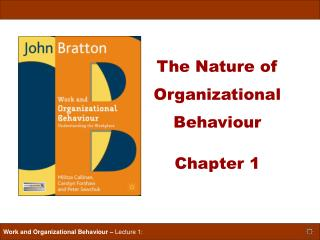 The Nature of Organizational Behaviour  Chapter 1
