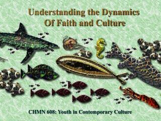 CHMN 608: Youth in Contemporary Culture