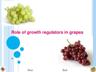 Role of growth regulators in grapes