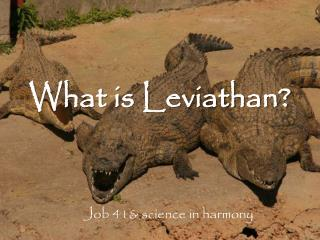 What is Leviathan?