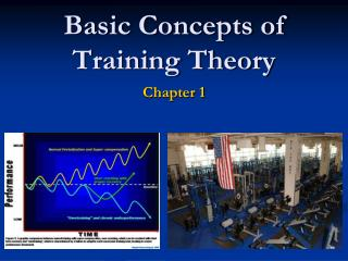 Basic Concepts of Training Theory