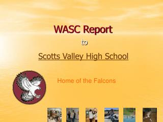 WASC Report