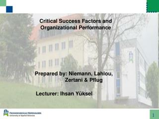 Critical Success Factors and Organizational Performance