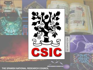 THE SPANISH NATIONAL RESEARCH COUNCIL