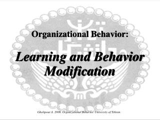 Organizational Behavior: Learning and Behavior Modification