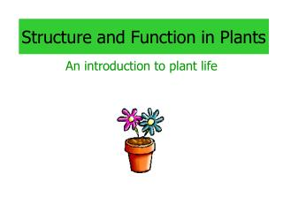 Structure and Function in Plants