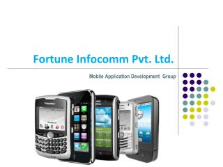 Fortune Infocomm Pvt. Ltd.