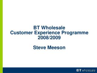 BT Wholesale Customer Experience Programme 2008/2009 Steve Meeson
