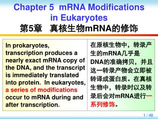 Chapter 5  mRNA Modifications in Eukaryotes 第 5 章   真核生物 mRNA 的修饰