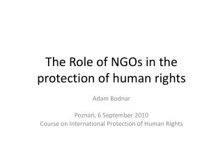 The Role of NGOs in the protection of human rights