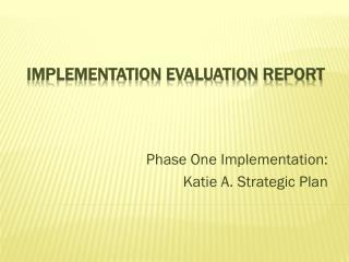 Implementation Evaluation Report