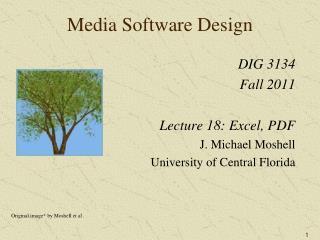 Media Software Design