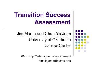 Transition Success Assessment