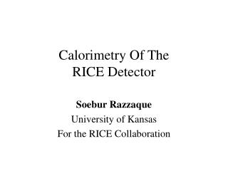Calorimetry Of The RICE Detector