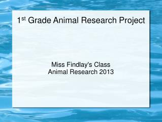 1 st  Grade Animal Research Project