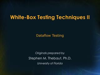 White-Box Testing Techniques II