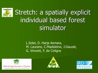 Stretch: a spatially explicit individual based forest simulator